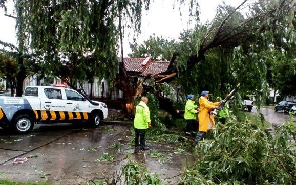 Abella: Mi reconocimiento y agradecimiento a todos los equipos municipales que trabajaron durante el temporal