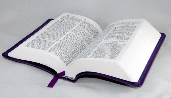 ¿Es cierto que en la Biblia nadie ríe?